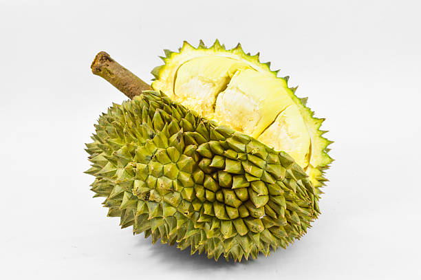zimmer mit king-size-bett von obst, durian auf weißem hintergrund  - jackfrucht stock-fotos und bilder