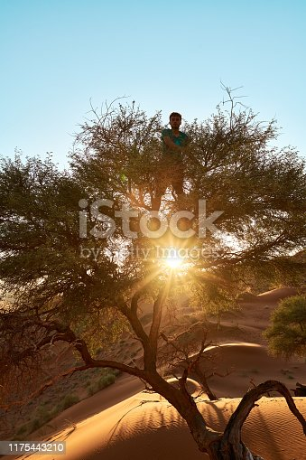Portrait of a young man climbing a tree in the Namibian Desert