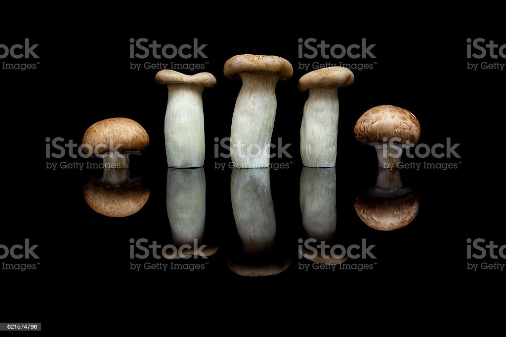 King oyster mushrooms and brown champignons on black photo libre de droits