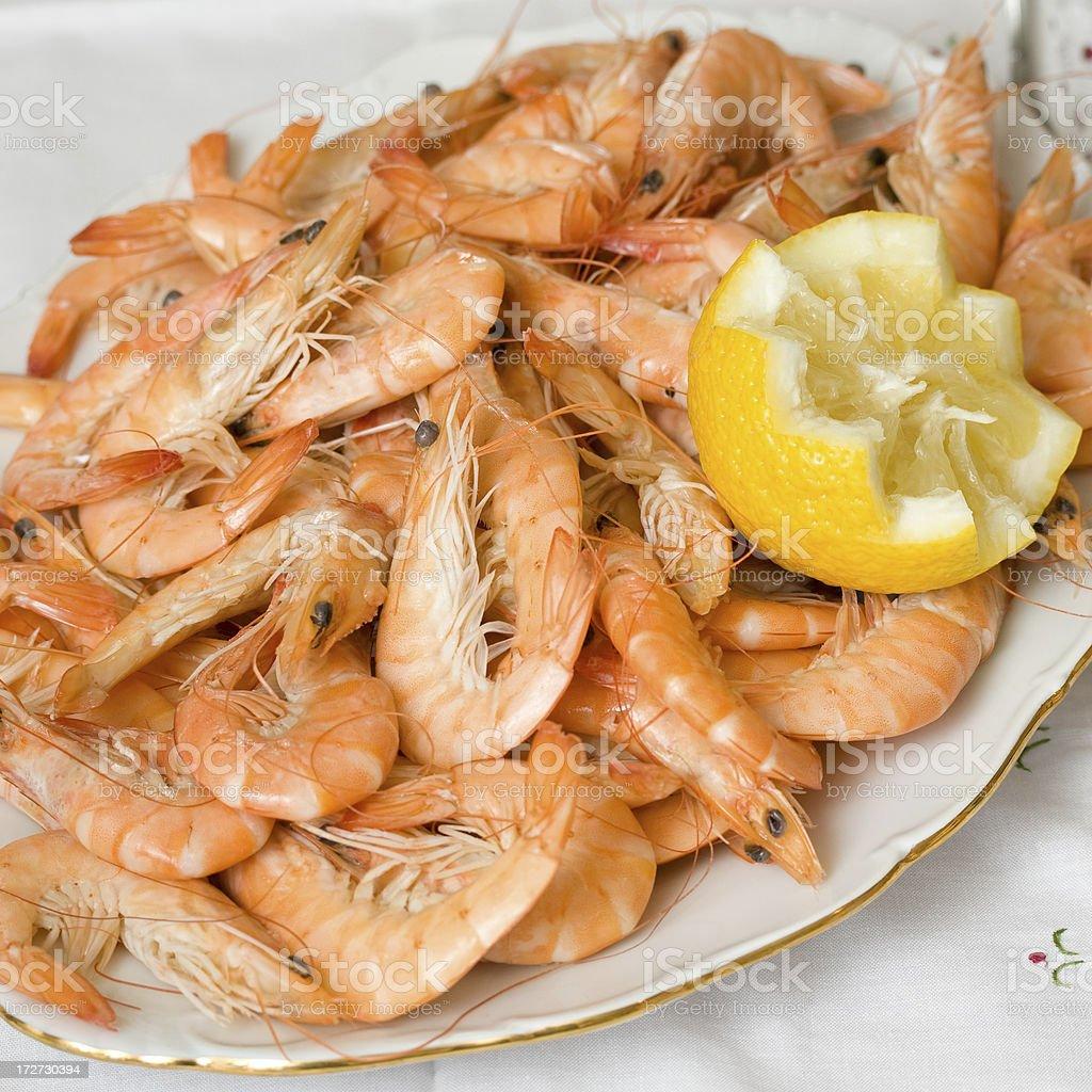 King prawns royalty-free stock photo