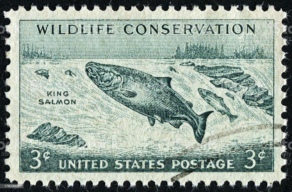 King Salmon Stamp royalty-free stock photo