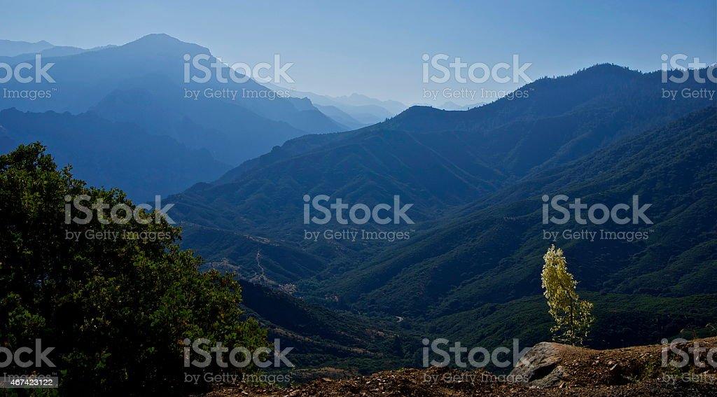 Kings Canyon Haze stock photo