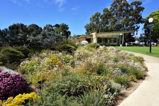 King's Park, Perth stock photo