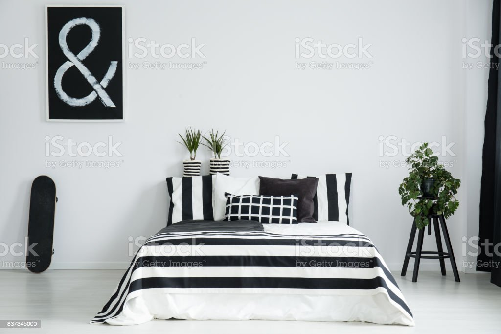 King-size bed between skateboard and plant stock photo