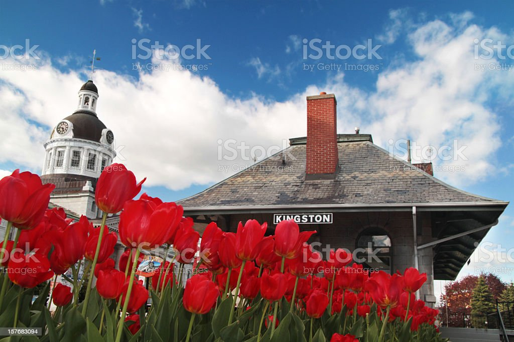 Kingston Downtown with Tulips and Historic Train Station royalty-free stock photo