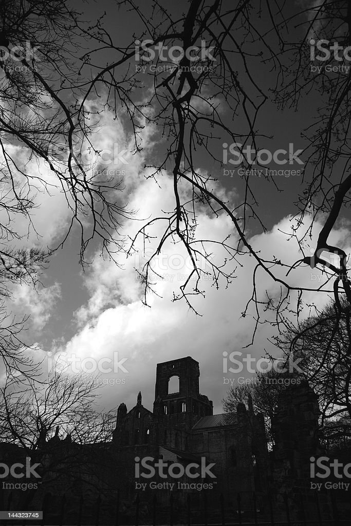 Kirkstall Abbey framed by trees stock photo