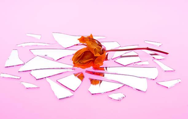 Kiss by a wilted rose is shattered love picture id178184966?b=1&k=6&m=178184966&s=612x612&w=0&h=hdwhnfkfqgestp 2livoajgedlesoej7hzbf4rbdosu=