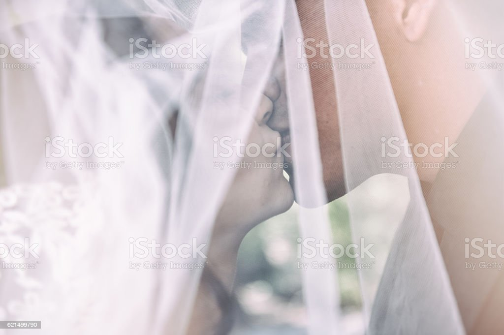 Kiss under the veil foto stock royalty-free