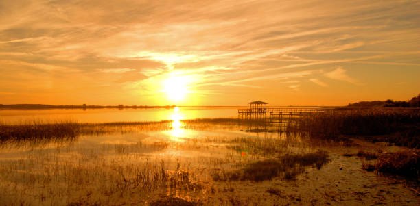 kissimmee sunset - kissimmee stock photos and pictures