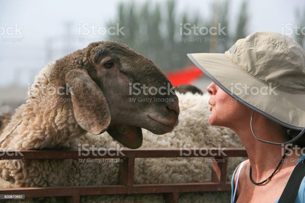 Embrasser un mouton sur le marché de bétail de dimanche de Kashgar, Chine - Photo