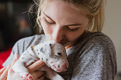 A dog breeder is holding one of the puppies from her Dalmatian's litter and is kissing it on the head.