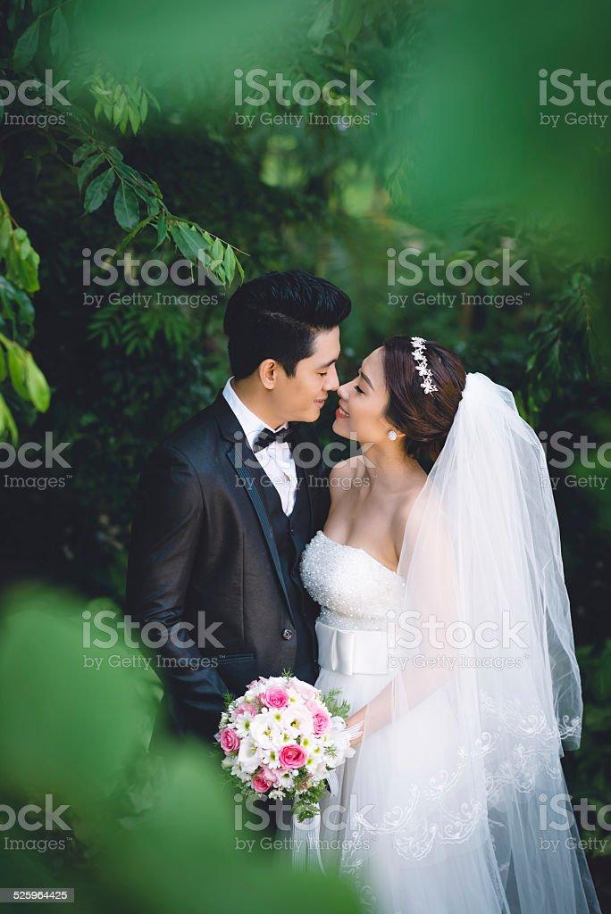 Kissing wedding couple stock photo