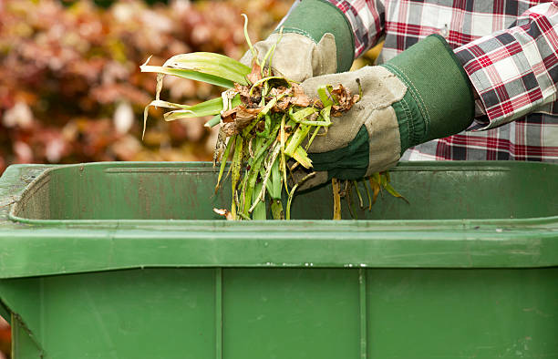 Kitchen and Garden Waste stock photo