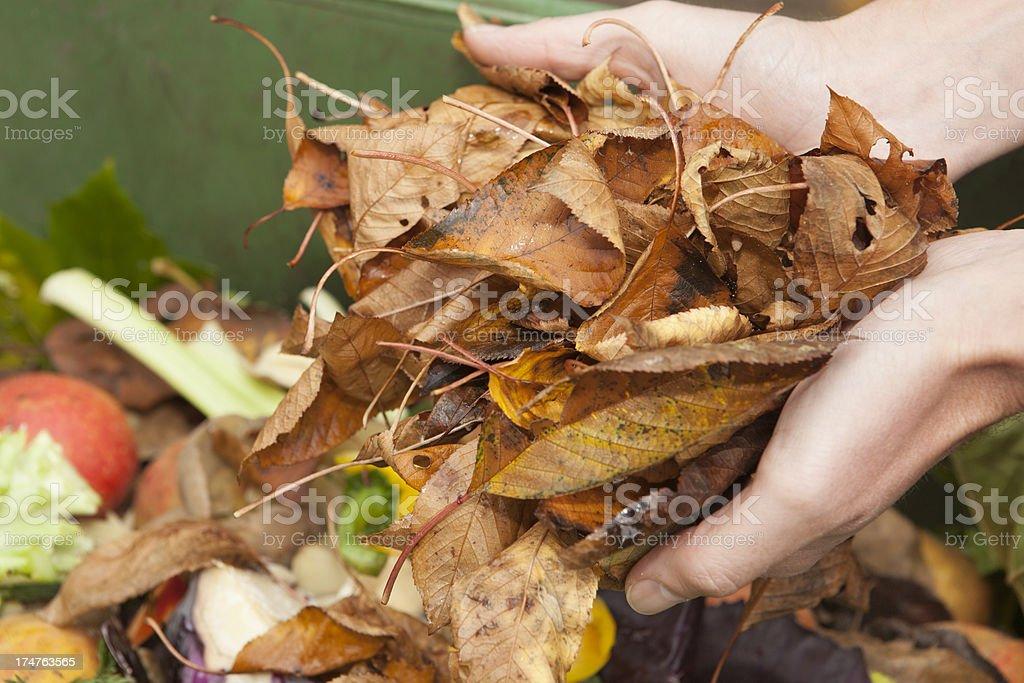 Kitchen and Garden Waste stock photo