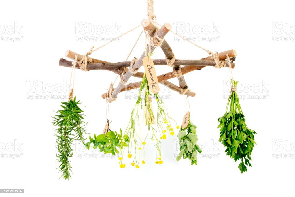 Kitchen Herbal Witch Branch Pentagram Herb Dryer With Witches Besom