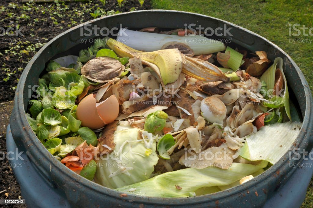 Kitchen waste stock photo