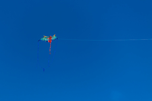 Kite competition on a sunny hot day.