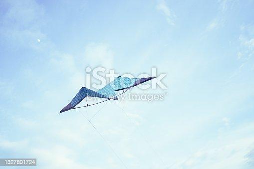 istock Kite flying free 1327801724