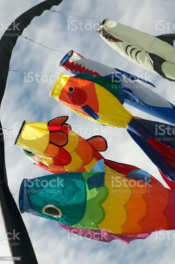 kites blowing in the wind stock photo
