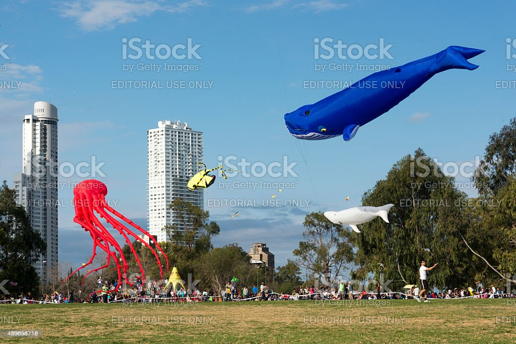 XV Kites Festival Rosario stock photo