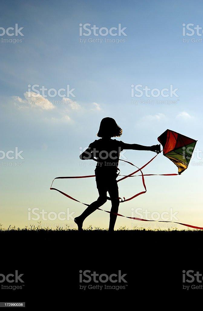 Kites Lizenzfreies stock-foto