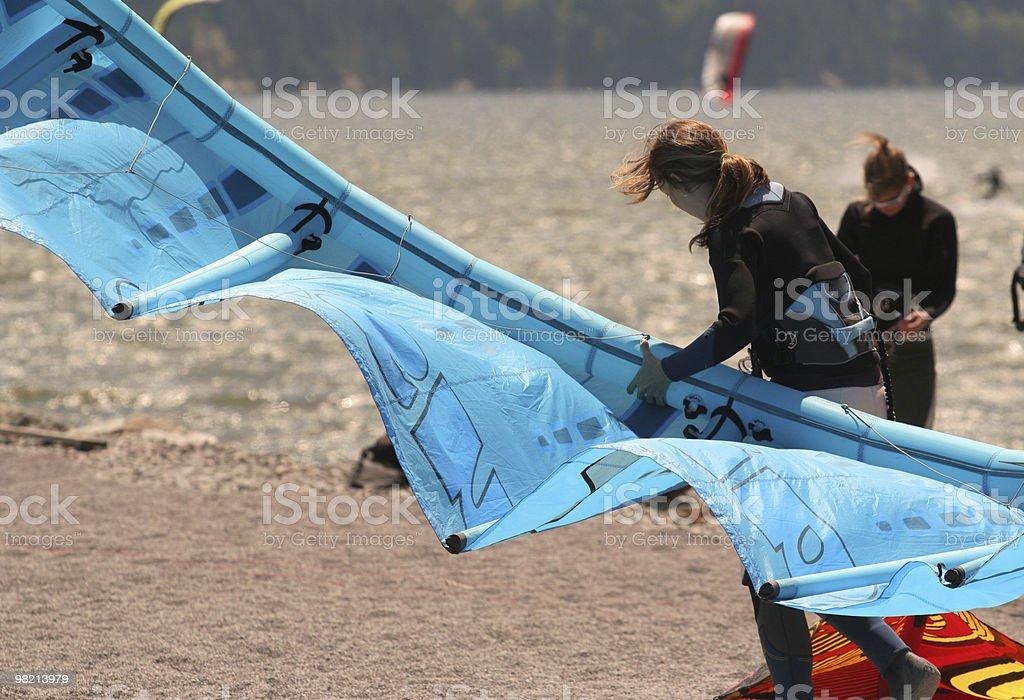 Kites royalty-free 스톡 사진