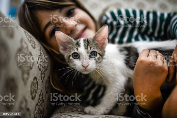 Kitten and kid picture id1027281002?b=1&k=6&m=1027281002&s=612x612&h=kr5z7rr6xqh5jof1qtpccmhrbsbqybjnb xhadrp9yo=