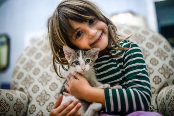 Kitten and kid picture id1056088376?b=1&k=6&m=1056088376&s=612x612&w=0&h=2qpdos4pu00rnl2peedlrswh1tt 5 lin16hfma6dzw=