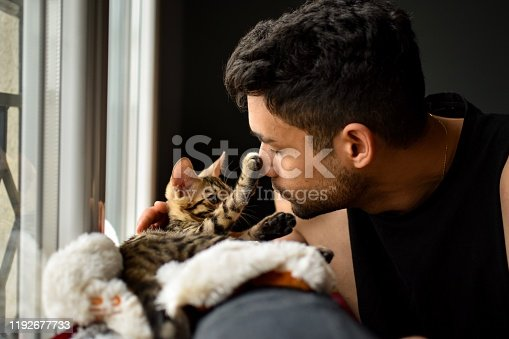 A bengal baby cat just got adopted by a métis man. The pet is getting to know its master. Complicity and affection in a warm home.