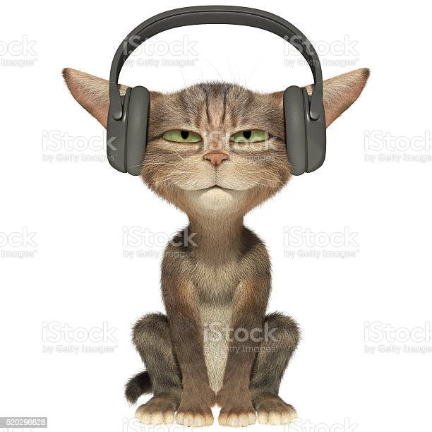 Kitten listens to the music in headphones picture id520296628?b=1&k=6&m=520296628&s=612x612&h=phmzda3qvb701g7qeb1hr8pkquflvdbf4pu6ylttzfo=