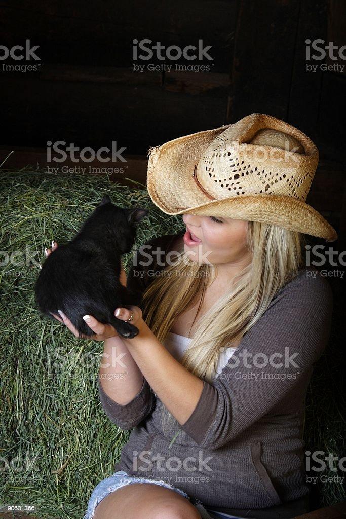 Kitten Whisperer royalty-free stock photo
