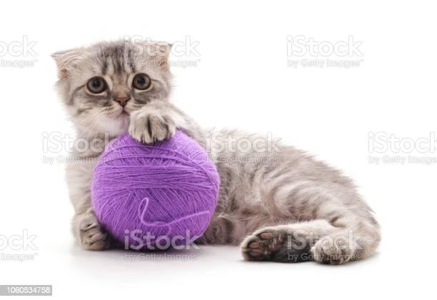 Kitten with a ball picture id1060534758?b=1&k=6&m=1060534758&s=612x612&h=pyixof5c8kpfkhx2oxaovayf6hbmr 6exzjxzjonnnq=