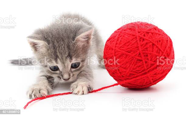 Kitten with ball of yarn picture id621359810?b=1&k=6&m=621359810&s=612x612&h=l2xhjkrkgczjtsrom4rdsxhcijzr4ksixhmk9v3oloa=