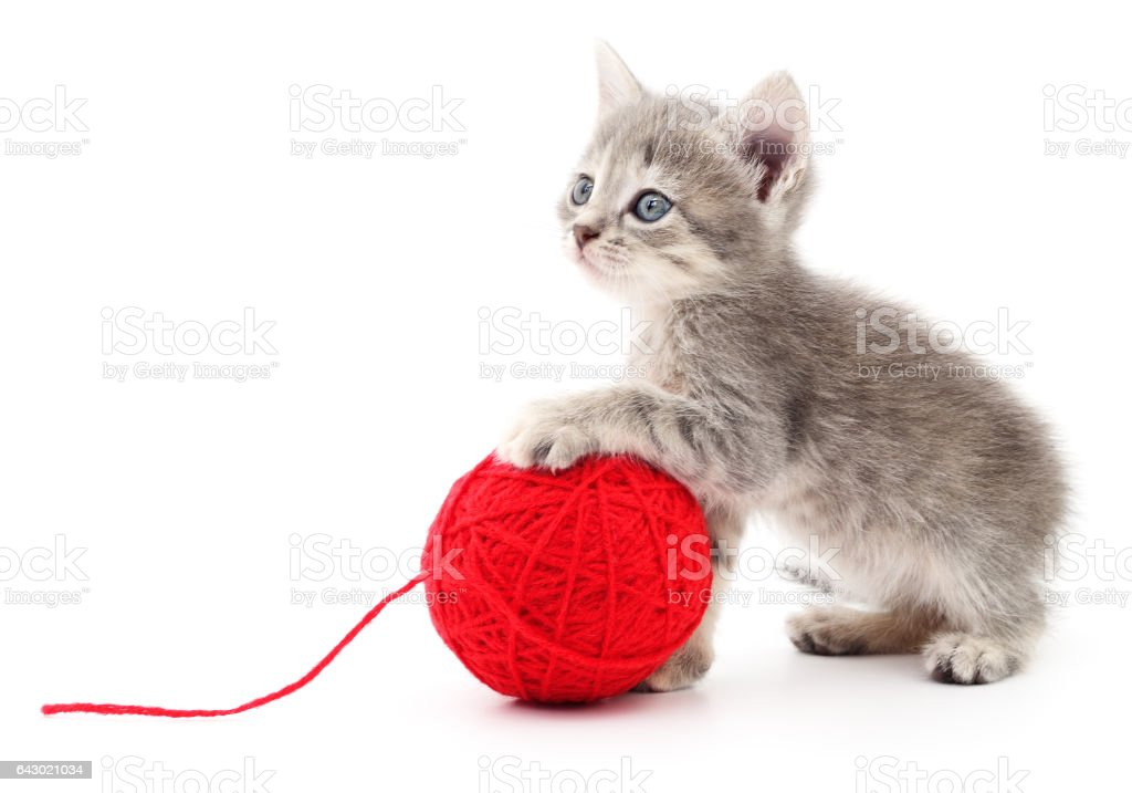 Kitten with ball of yarn. stock photo