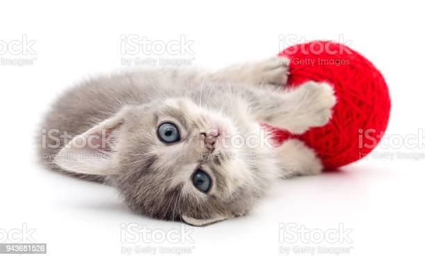Kitten with ball of yarn picture id943681526?b=1&k=6&m=943681526&s=612x612&h=1wpigwye9agu2sxfzknheh34scuinpczbgmkec8vlki=