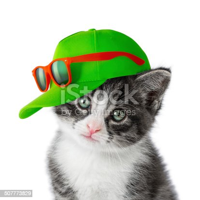istock Kitten with green cap on white background 507773829