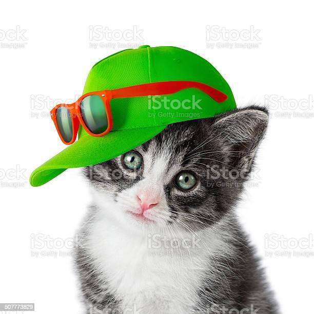 Kitten with green cap on white background picture id507773829?b=1&k=6&m=507773829&s=612x612&h=fatrafm72yoqvgmmlg1ixwvwcecl u85ev33zxwx ca=