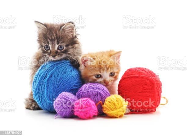 Kittens with balls of yarn picture id1158754970?b=1&k=6&m=1158754970&s=612x612&h= fej797hgmtfgchs7eda0lqcyutmvkhg0vzentbi2iq=