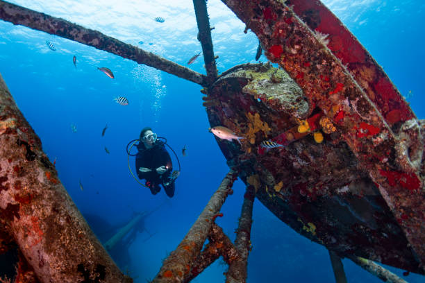kittiwake shipwreck - grand cayman - wreck diving stock pictures, royalty-free photos & images
