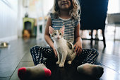 Little girl sits on the floor in a domestic kitchen or dining room with a little kitten on her lap, responsibility, home life, pets, family, and love