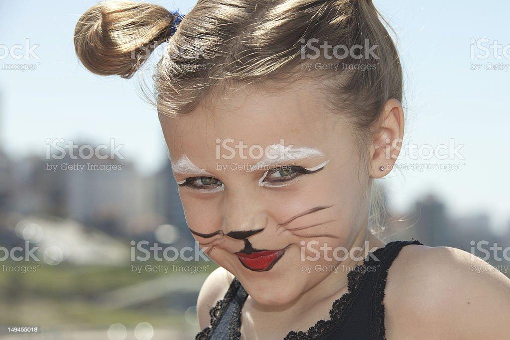 kitty cat royalty-free stock photo