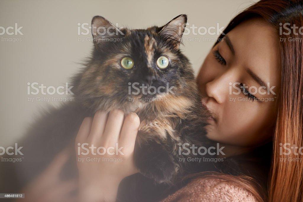 Kitty cuddles stock photo