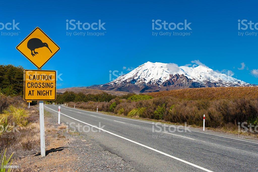 Kiwi and mount Ruapehu stock photo