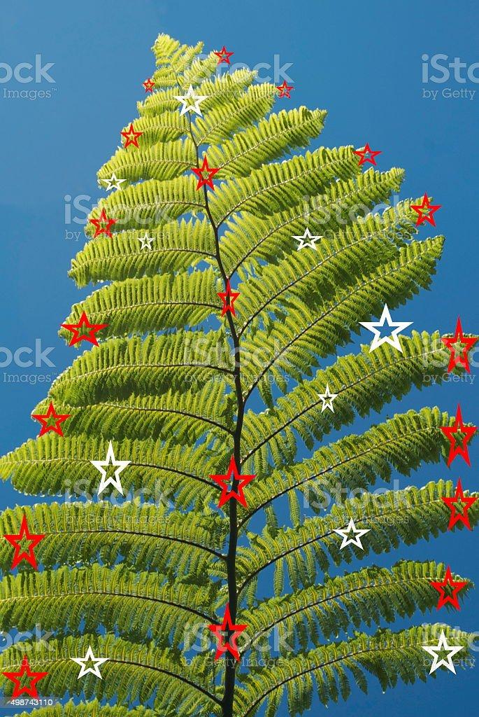 Kiwi Christmas Ponga Fern Stock Photo More Pictures Of 2015 Istock