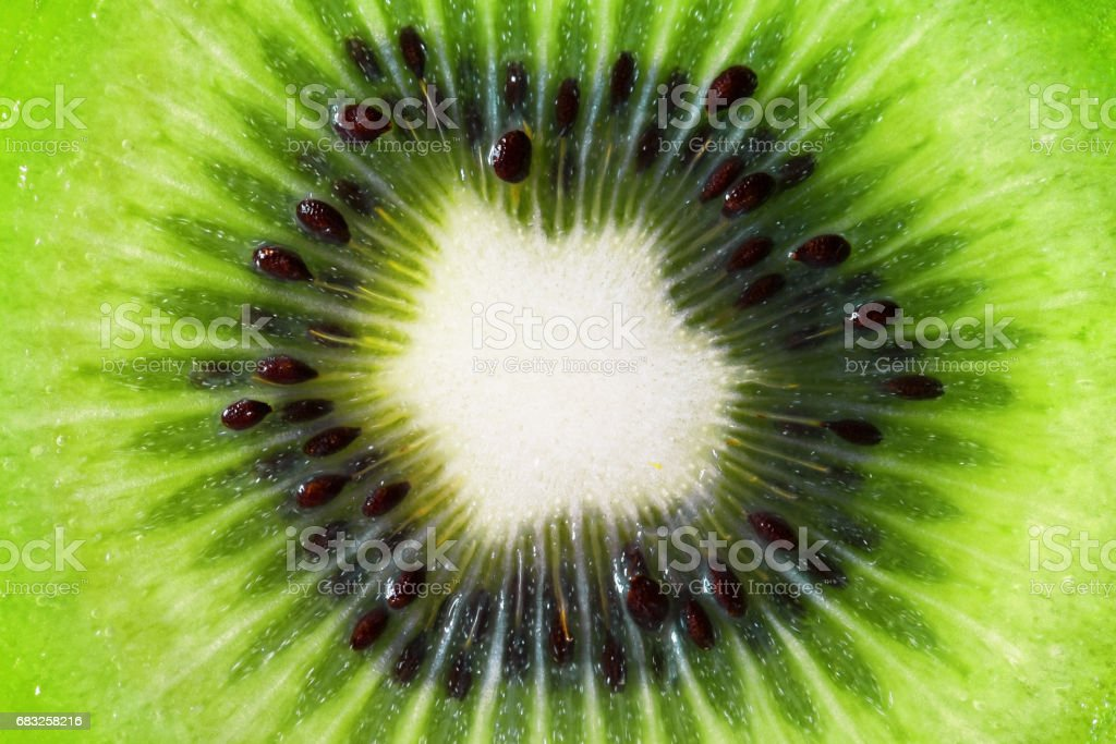 Kiwi Close-up royalty-free 스톡 사진
