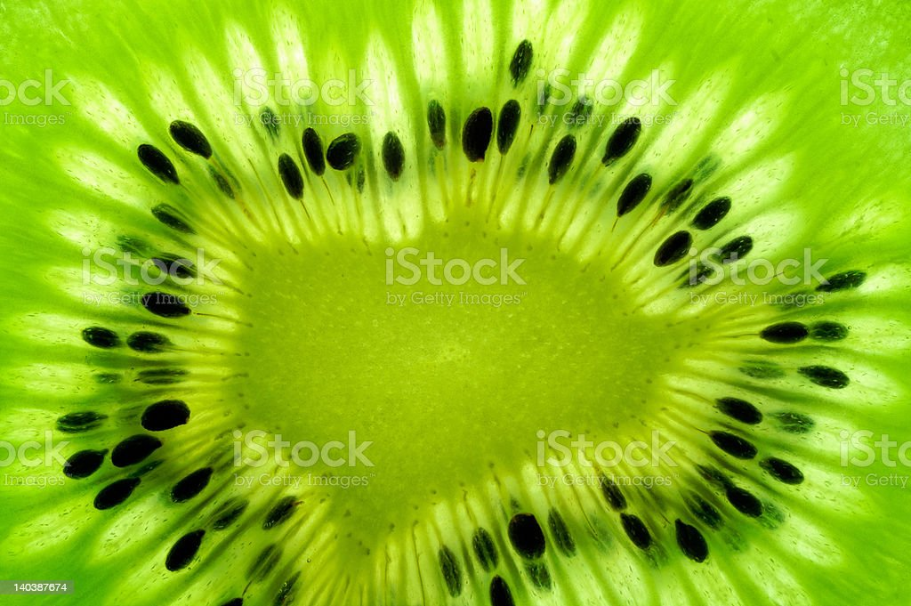 Kiwi fruit  slice on a light table 2 (back lighted) royalty-free stock photo