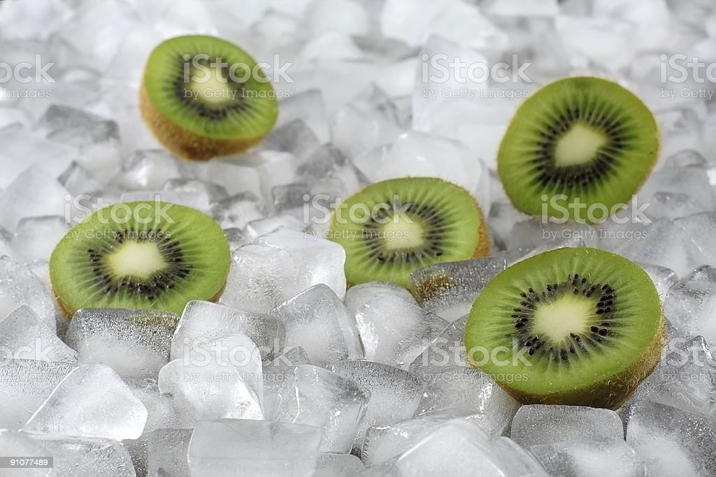 Kiwi on Ice royalty-free stock photo