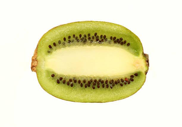 kiwi – Foto