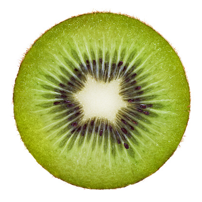 Kiwi (actinidiaceae) portion on white background.Related pictures: