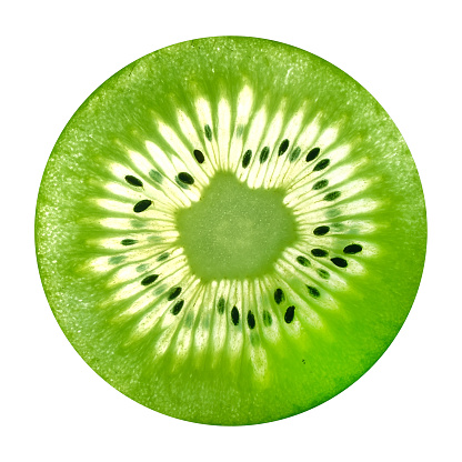 Kiwi Sectional view background